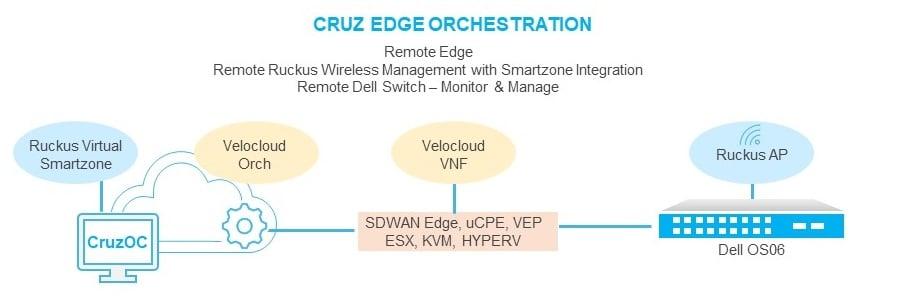 CRUZ CAMPUS AND NETWORK EDGE
